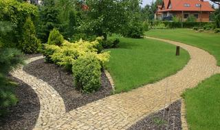 Pielęgnacja trawnika od wiosny do jesieni. Poznaj podstawowe zabiegi pielęgnacyjne. PORADNIK