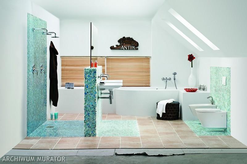 Prysznic Na Srodku Lazienki
